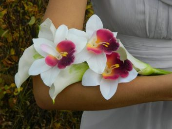 Orchid in hand